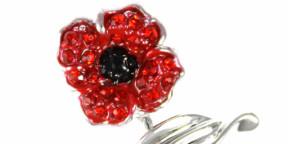 Wholesale jewellery brand raises almost £40,000